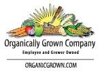 OGC logo 2