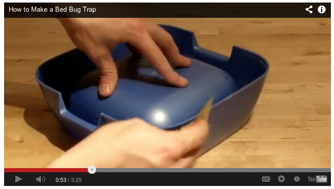Bed Bug Video